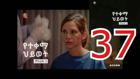 yetekema hiwot season 2 part 37 | kana tv drama